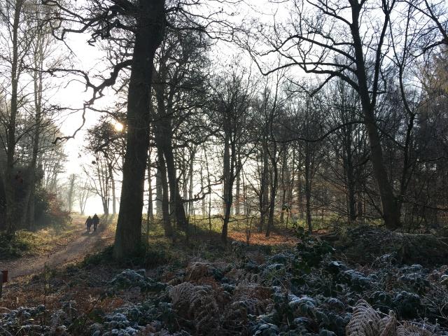 rachelspeed_clumberpark-5